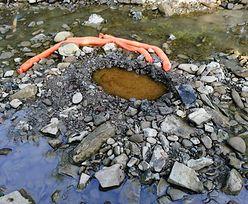 Tajemnicza substancja wpływa do rzeki Sękówka. Strażacy zabezpieczyli teren