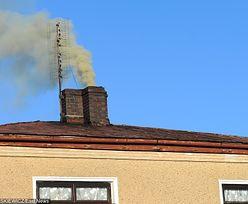 Smog może powodować omamy i choroby psychiczne