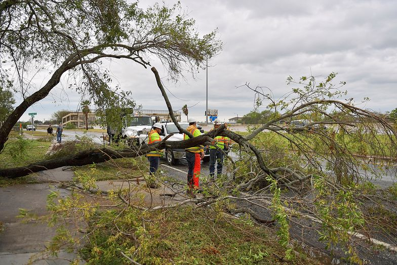 Ratownicy usuwają powalone drzewa w Corpus Christi