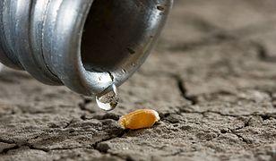 UNICEF: codziennie dzieci umierają przez brak dostępu do czystej wody