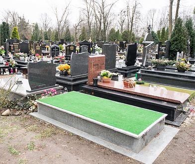 Grób Aleksandry Natalli-Świat na wrocławskim cmentarzu Ducha Świętego po zakończeniu czynności ekshumacyjnych,