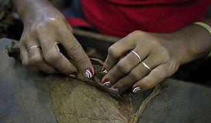 Na Kubie trwa słynny festiwal cygar