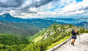 Tatrzański Park Narodowy poszukuje wolontariuszy