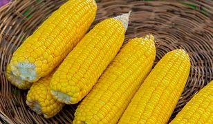 Perfekcyjnie ugotowana kukurydza. Tym sposobem zawsze się uda