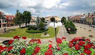 Płońsk – najbardziej znane polskie miasto w Izraelu?