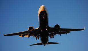 Według raportu IATA Ryanair jest 5. największym przewoźnikiem powietrznym na świecie