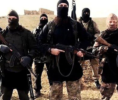 """Raport: """"Wirtualny Kalifat"""" rośnie w siłę"""