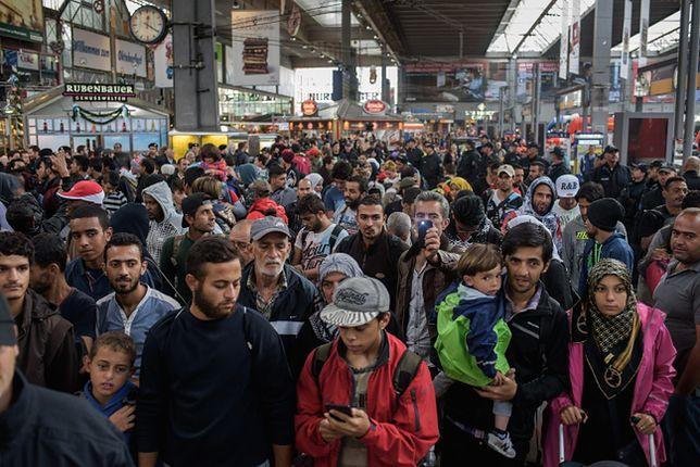 Część imigrantów do odesłania?