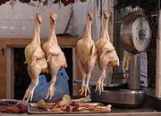 Tym karmione są kurczaki! A potem my to jemy