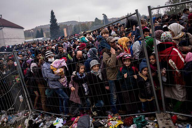 Uchodźcy w Słowenii przy granicy z Austrią