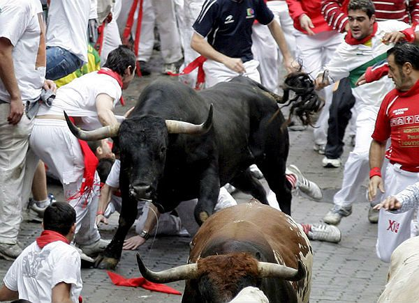 Byki biegną wśród uczestników gonitwy wąskimi uliczkami Pampeluny w ramach fiesty patrona miasta, św. Fermina