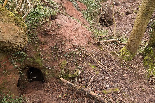 Anglia: przez króliczą norę do niesamowitych, podziemnych komnat