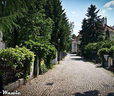 Stare Bielany - zielona osada na carskim poligonie (SPACER)