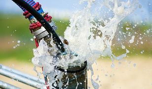 Woda w domu: z wodociągu czy z własnej studni?