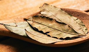 Liście laurowe nadają aromatu zupom, sosom i zalewom