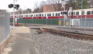 Pociąg z pasażerami bez maszynisty przejechał przez trzy stacje