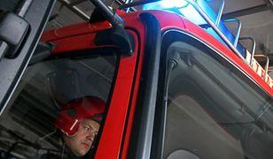 Pożar hali zakładu utylizacyjnego w Kutnie