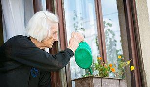 95-latka zażądała alimentów od 107-letniego męża