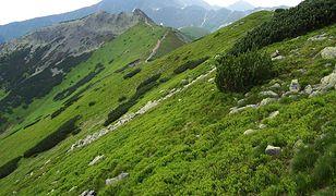 Tatry -  mniej znane szlaki