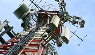 Blokada telefonii komórkowej w dużych miastach