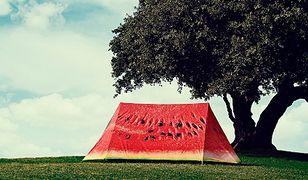 Apetyczne namioty