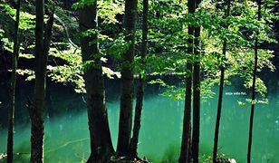 Diabelskie jeziorka czterokrotnie odwiedzał Karol Wojtyła