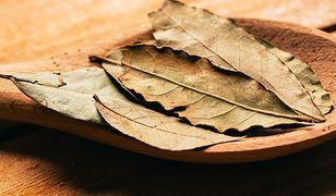 Zapal liść laurowy w mieszkaniu - efekt cię zaskoczy
