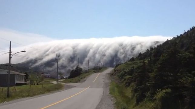 Nowa Fundlandia - niezwykły fenomen natury