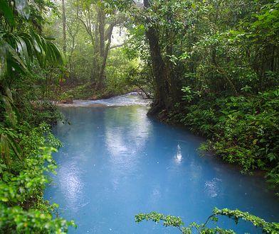Rio Celeste - zagadka niebiańskiej rzeki rozwiązana