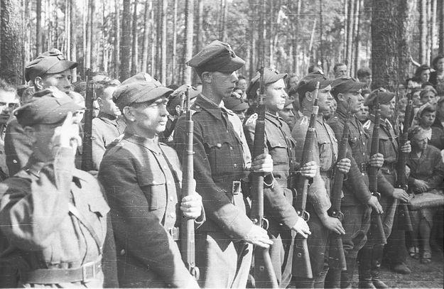Po głoszeniu amnestii oddział leśny AK pod Kałuszynem prezentuje broń, wrzesień 1945 r.