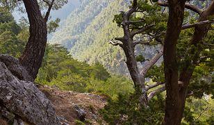 Kreta - zatoka Balos, przylądek Gramvousa i wąwóz Samaria