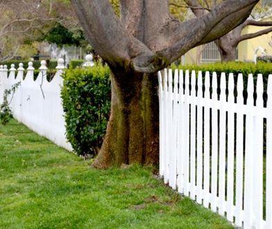 Ogrodzenie domu: funkcjonalny, ładny i bezpieczny płot