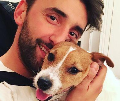 Gwiazdy show-biznesu wprowadzają na salony swoje psy