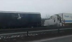 Wypadek w łódzkiem z udziałem zespołu rockowego z USA. Są ranni