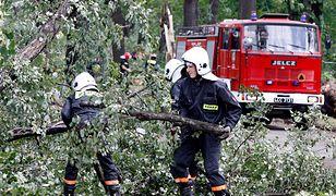 Wiatr może uszkadzać linie energetyczne i łamać gałęzie drzew.