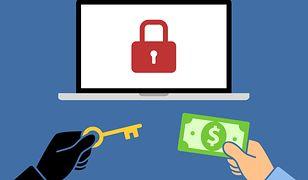 Kup sobie wirusa! Nowa usługa w internecie ułatwia życie przestępcom
