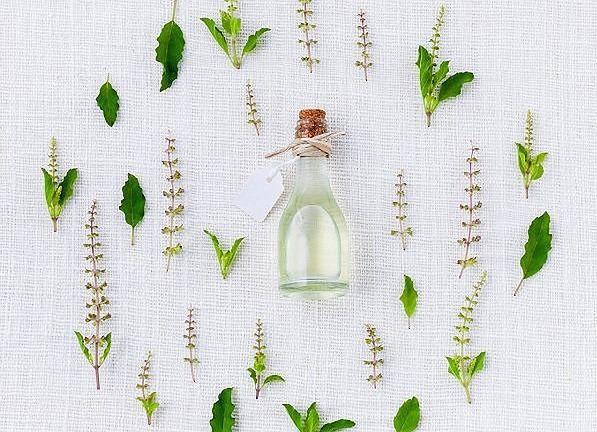 Naturalne suszone zioła i przyprawy - czerp siłę z roślin!