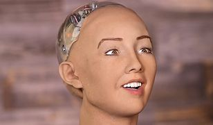 / Robot Sophia