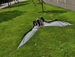 Niesamowity samolot, który lata tak, jak... nietoperz!