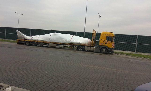 Zapakowany wieloryb w drodze do Warszawy