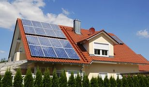 Odnawialne źródła energii. Ile to kosztuje i jak z nich korzystamy?