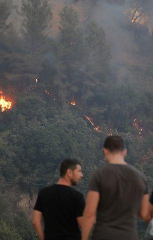 Pożar lasu w Nicei
