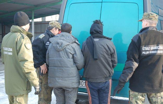 Dwaj Afgańczycy bez dokumentów, zatrzymani przez Straż Graniczną z Rudy Śląskiej. Imigranci chcieli dotrzeć do Francji