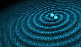 Fale grawitacyjne - będzie ich więcej przez liczne zderzenia czarnych dziur