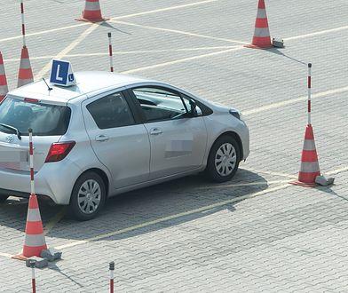 Prawo jazdy za łapówki w Gdańsku