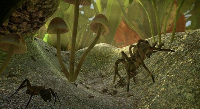 Nie będzie symulatora mrówki. Pieniądze wydano na alkohol i striptizerki