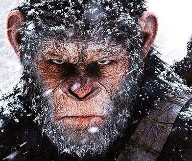 """""""Wojna o planetę małp"""": pierwszy fragment największego letniego hitu [TYLKO U NAS]"""