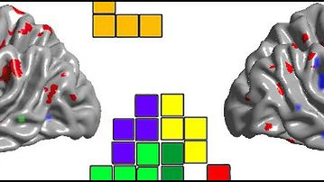 Tetris wpływa na mózg
