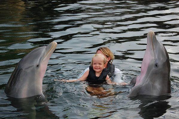 Dziecko z delfinami