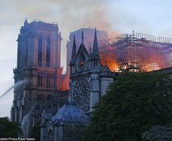 """Pożar katedry Notre Dame. Figury apostołów """"cudownie"""" uratowane"""